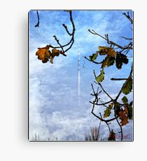 Telstra Tower in the Mist Canvas Print
