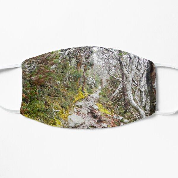 Winter Walk, Wilsons Promontory Flat Mask