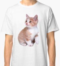 Kitten! Sale!!! Classic T-Shirt