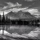 Herbert Lake in grey by James Anderson