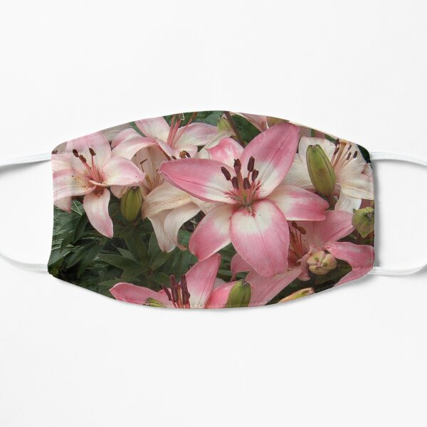 Gorgeous array of Pink and White Lilies in a Garden Flat Mask