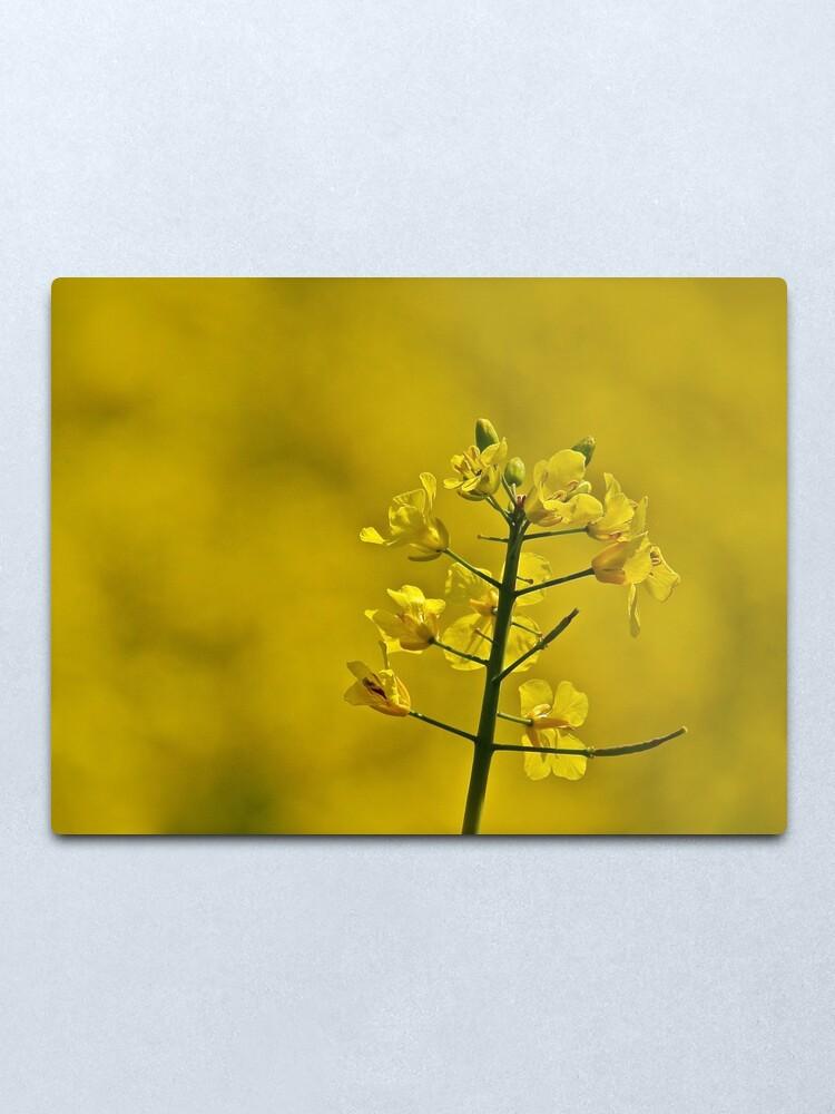 Alternate view of Yellow Flowers Metal Print