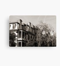 Savannah Elegance Canvas Print