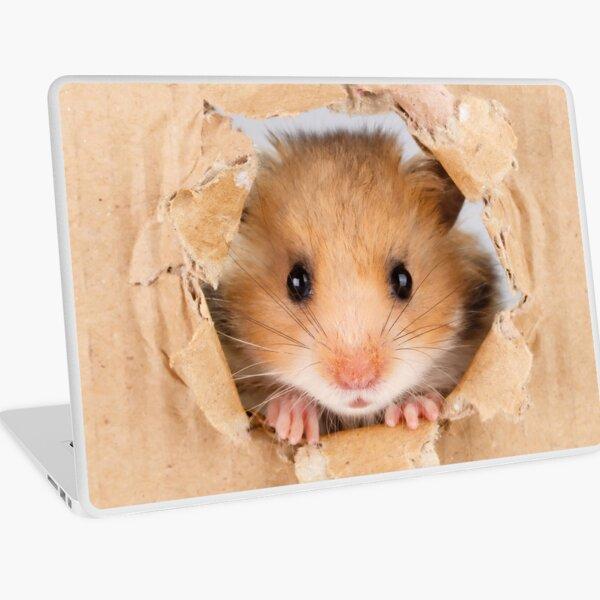 Cant Breathe -  Cute Hamster peeping through hole in brown cardboard Laptop Skin