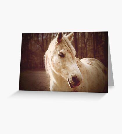 Majestic  Greeting Card