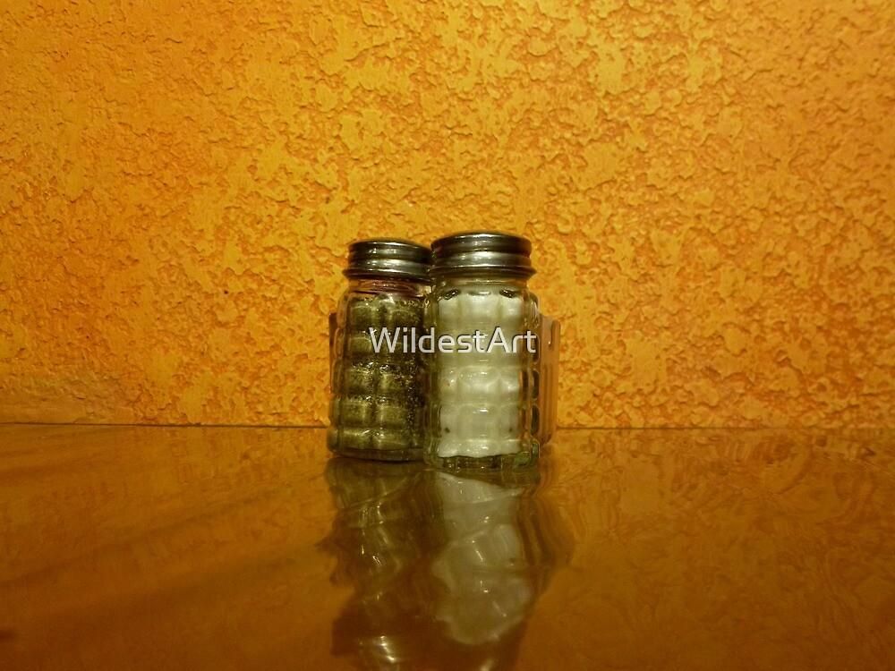 Shakers by WildestArt
