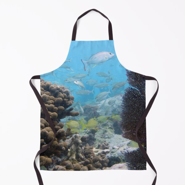 Watercolor Fish, French Grunt and Tomtate 01, St John, USVI Apron