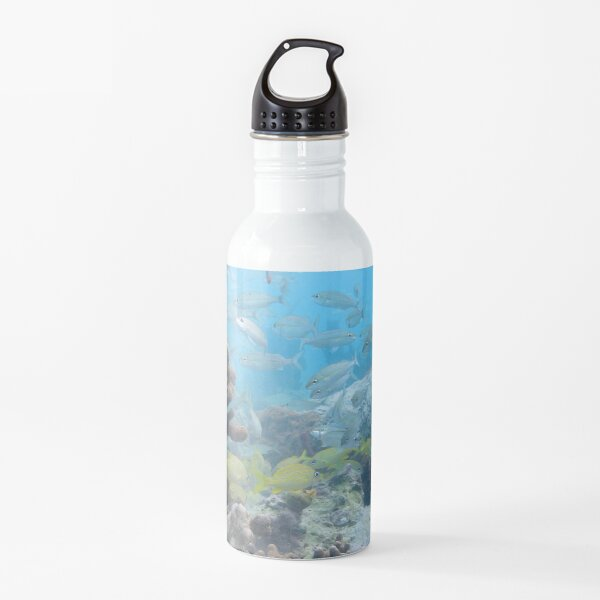 Watercolor Fish, French Grunt and Tomtate 01, St John, USVI Water Bottle