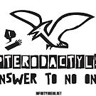 Pterodactyls Answer To No One! by InfinityBreak