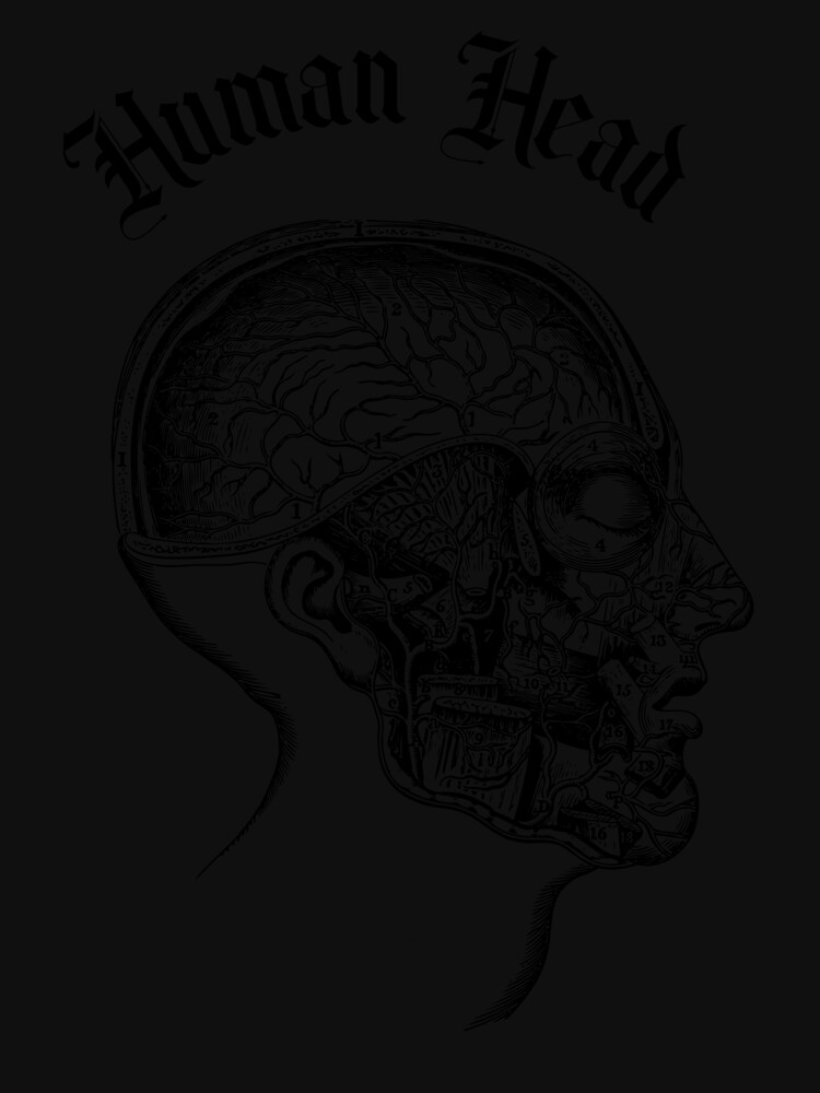 Human Brain by ds-4