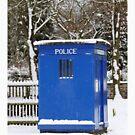 Police phone box by daveashwin