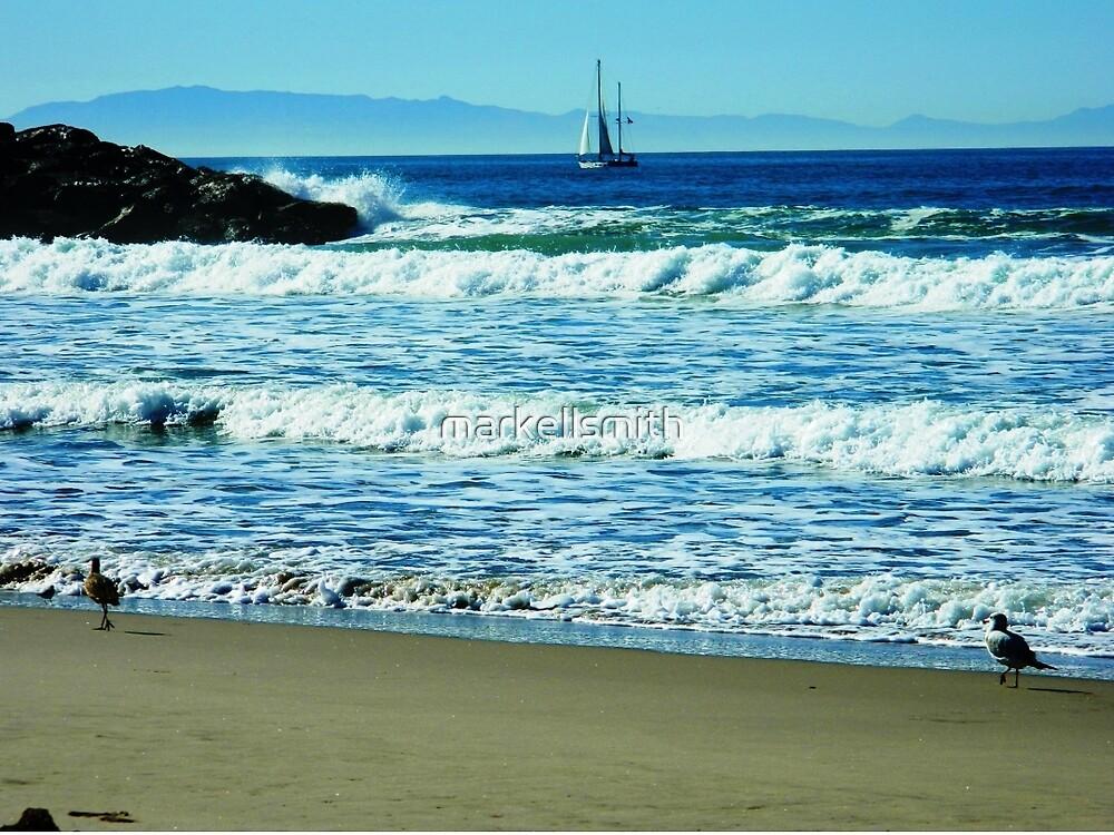 The Quiet Coast by markellsmith
