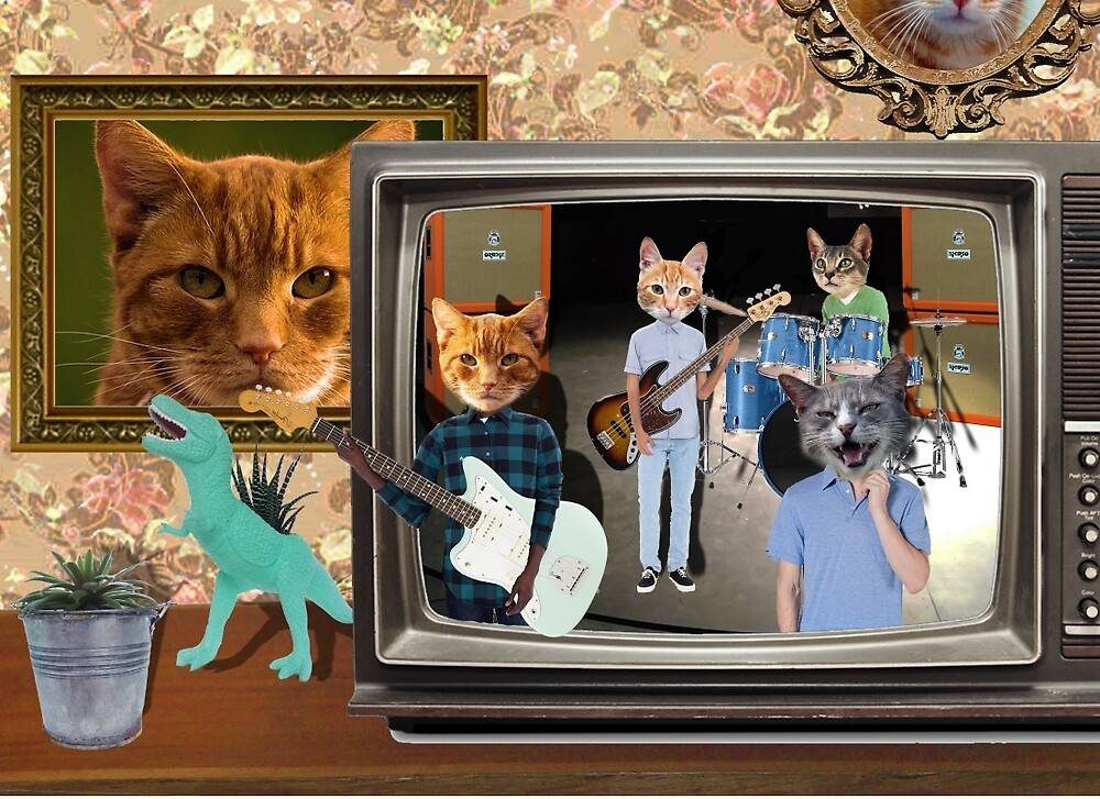 Band Cats by LBHewitt