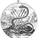Emblem tee #3 by Melanie  Dooley