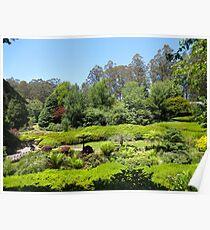 Rhododendrum Gardens 1 Poster