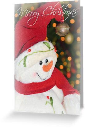 Merry Christmas From Frosty by Dawne Dunton