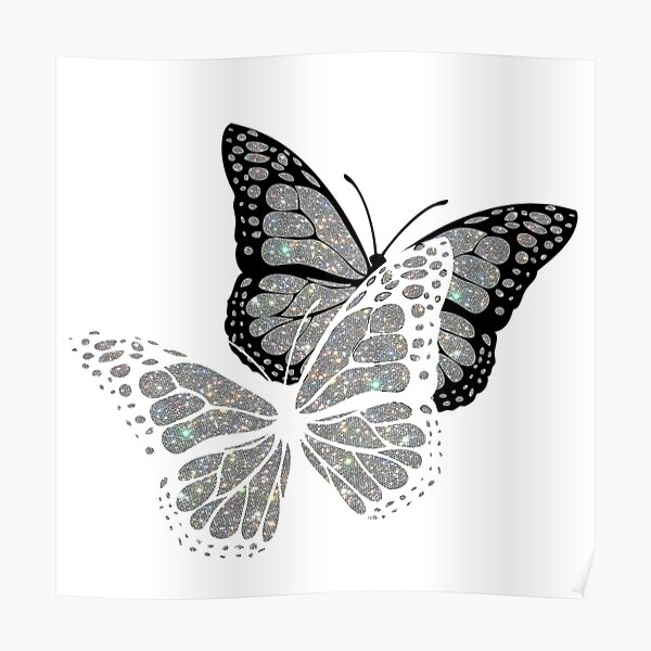 white and black glitter butterfly's  Poster