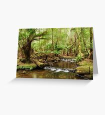 Russell Falls Creek Greeting Card
