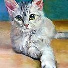 Cat 1 by Hidemi Tada