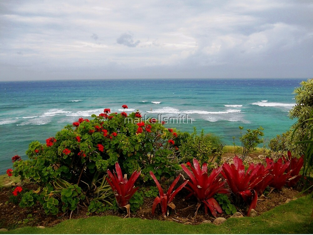 The Hawaiian Ocean  by markellsmith