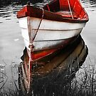 Red Boat by Artist Dapixara