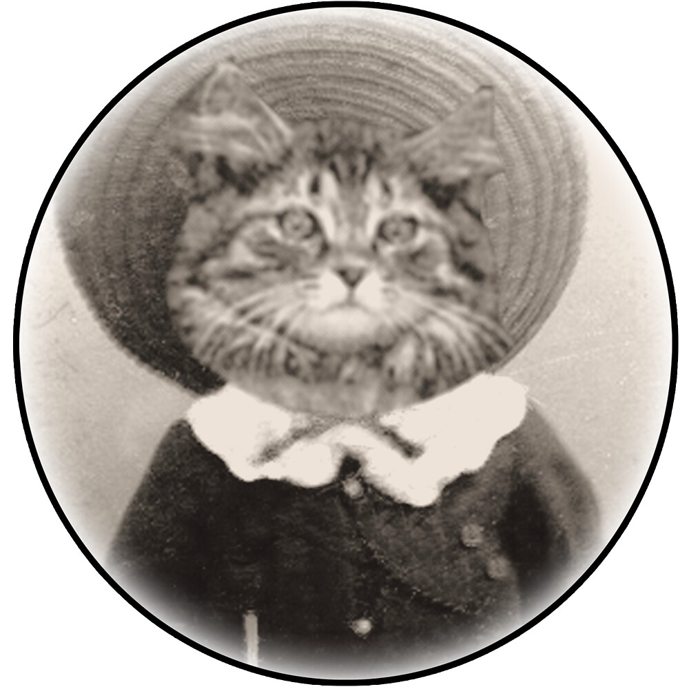 vintage hat cat by Rob Hopper