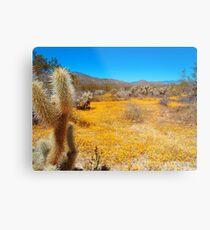 Anza Borrego Desert in Bloom Metal Print