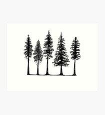 Lámina artística Pines