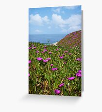 Springtime in Half Moon Bay Greeting Card