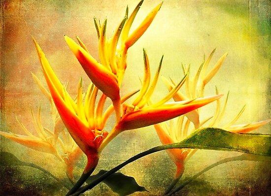 Flames of Paradise by Ellen Cotton