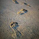 Footprints by Vulcan Spark Studios
