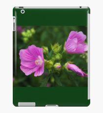 Delightful pink Mallow flowers iPad Case/Skin