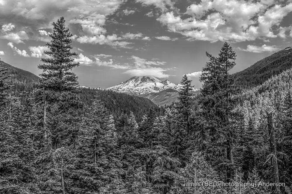 Mt. Rainier by James Anderson