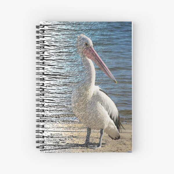 Digiatally enhanced Photograph Pelican Fliter Merge Line Art Spiral Notebook