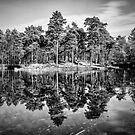 Mirror by Chopen
