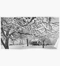 winter bliss (bw) Poster
