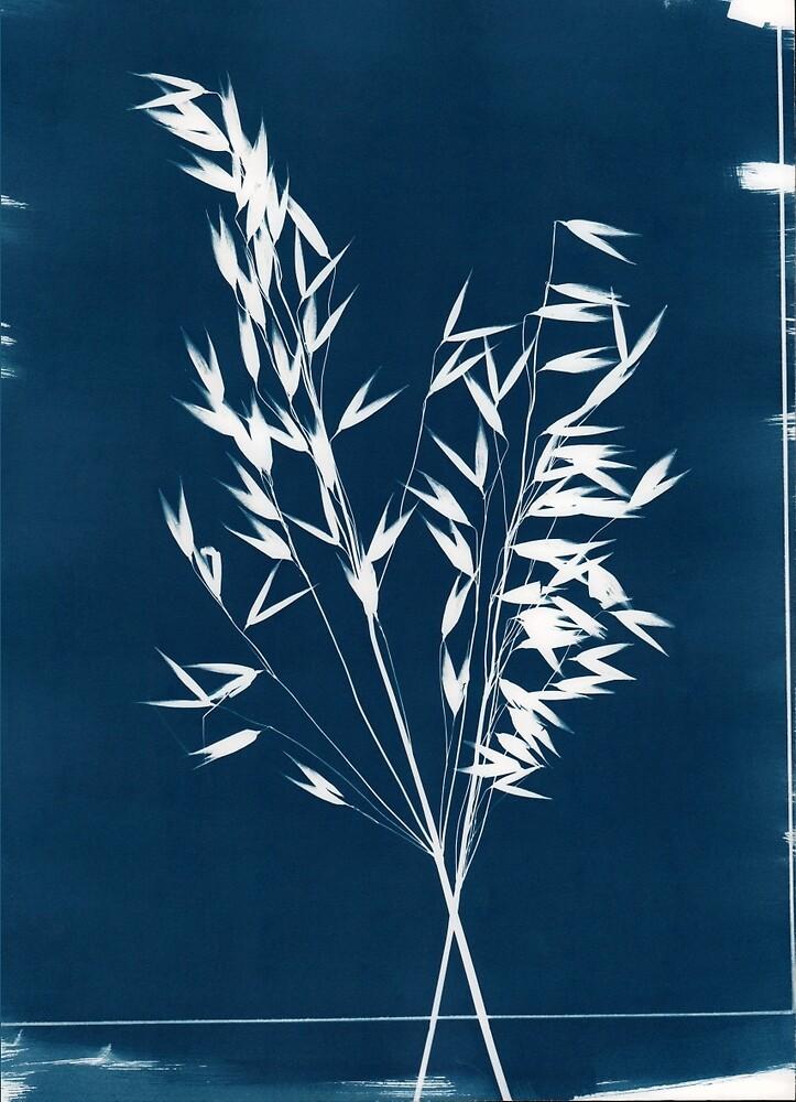Wild Grass by Kay-Tomlinson