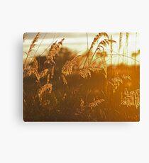 Okavango Sunrise Canvas Print