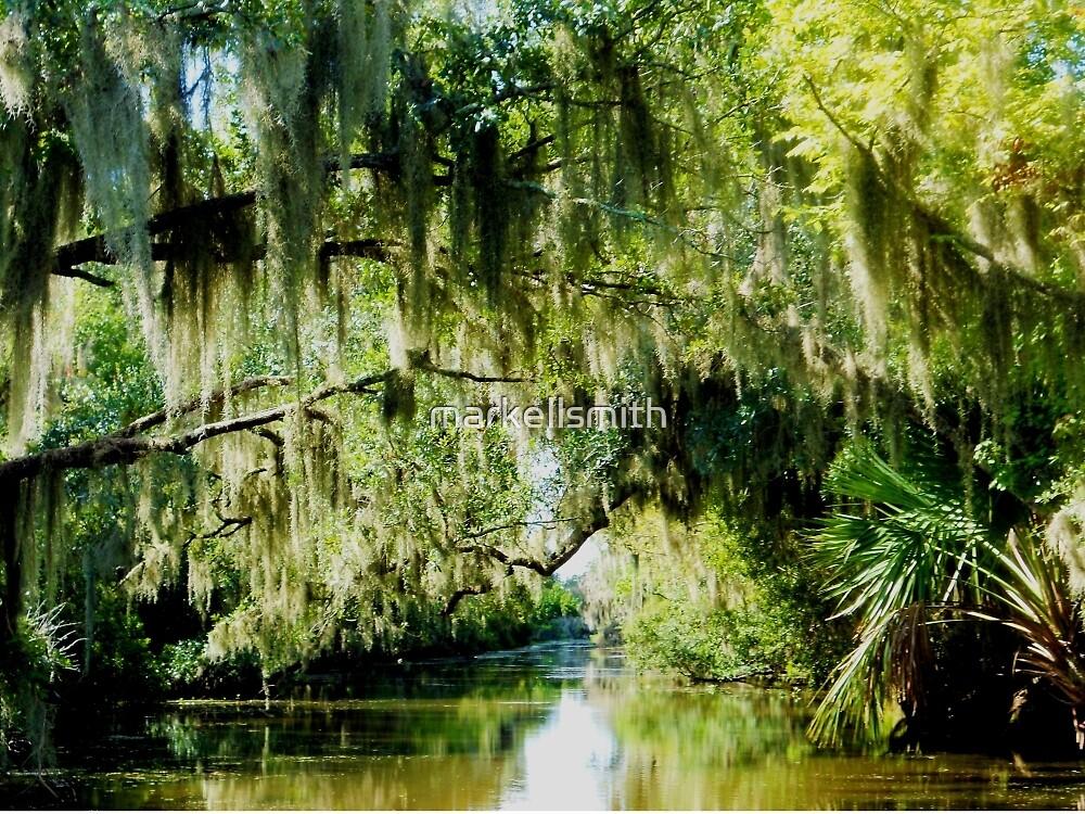 The Bayou 3 by markellsmith