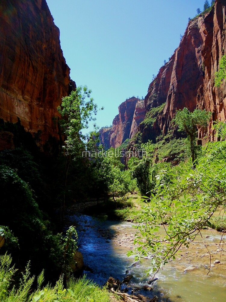 The Zion Canyon  by markellsmith