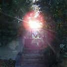 serene dream by luckylittle