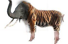 Animal Hybrid by Wpayne
