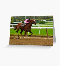 Race Horse Belmont Park, New York Greeting Card