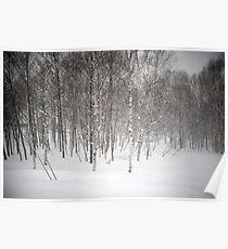 winter snowscene Poster