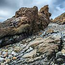 The Rocky Shore by James Watkins