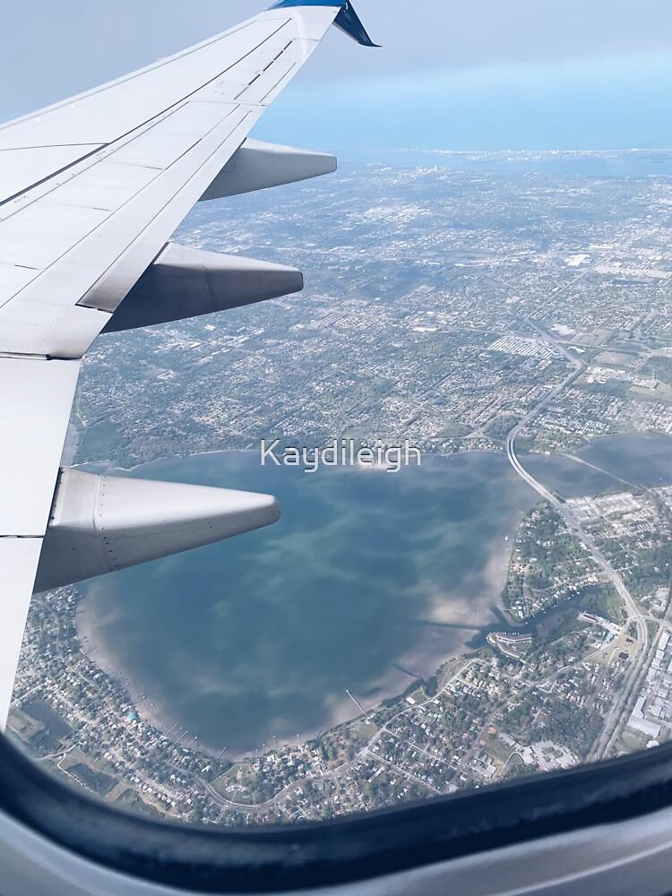Fly Over Florida by Kaydileigh