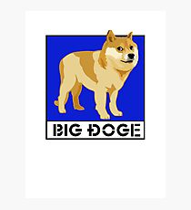 """Dogecoin inspired by """"Big Dogs"""" Photographic Print"""