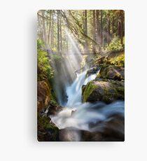 Sol Duc Falls Canvas Print