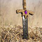 Sword in the Bail by John Dunbar
