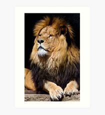 His Majesty  Art Print